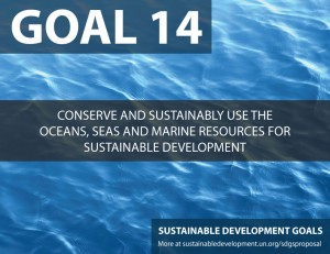 SDG Goal 14 is about conserving our seas and ocacions (life below water)  from United Nations Sustainable Development Goals