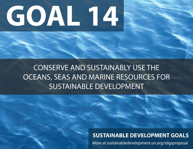 SDG-Goal-14-conserve-seas