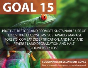 SDG Goal 15 is protecting the environment and life above land from United Nations Sustainable Development Goals