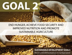SDG Goal 2 - hunger from United Nations Sustainable Development Goals