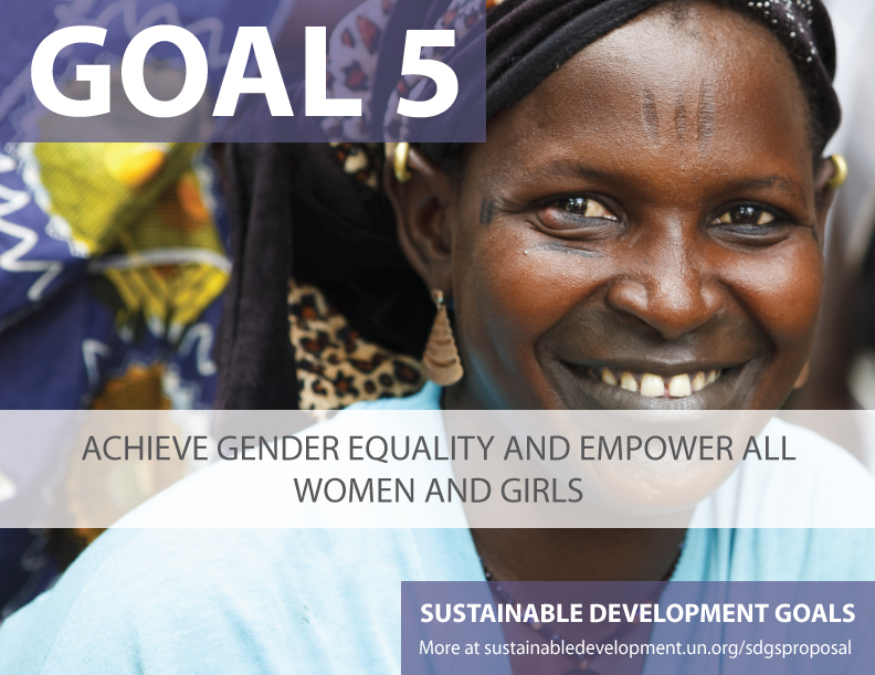 SDG Goal 5 - Gender Equality from United Nations Sustainable Development Goals