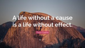 """A life without a cause is a life without effect."""