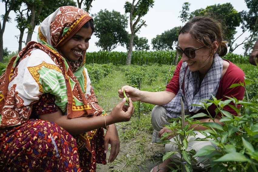Image of volunteering in agricultural projects