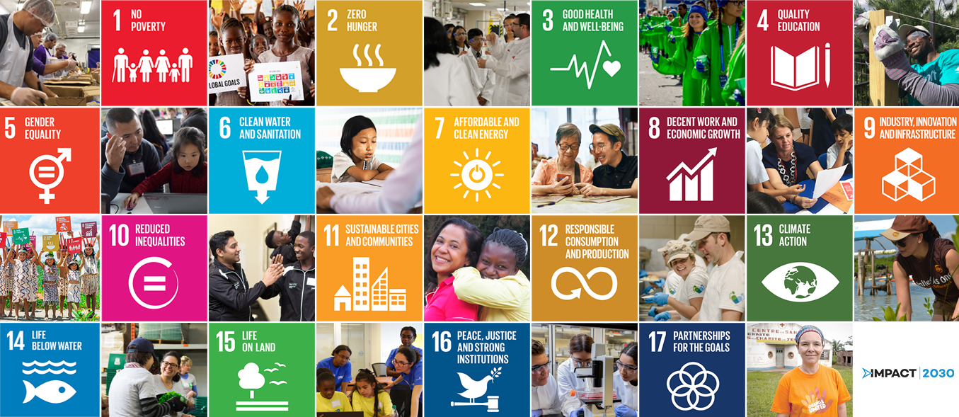Image of United Nations Sustainable Development Goals