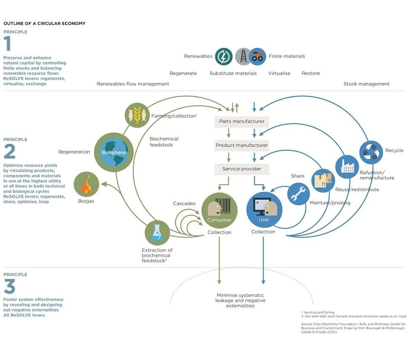 infographic on circular economy from Ellen MacArthur Foundation